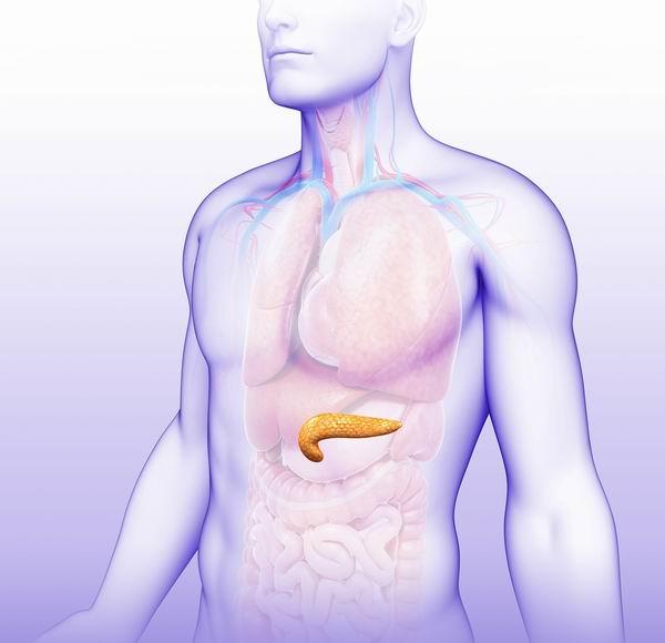 胰臟癌為何難發現? 5